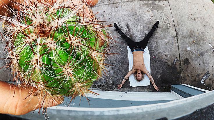 Cactus Catch!