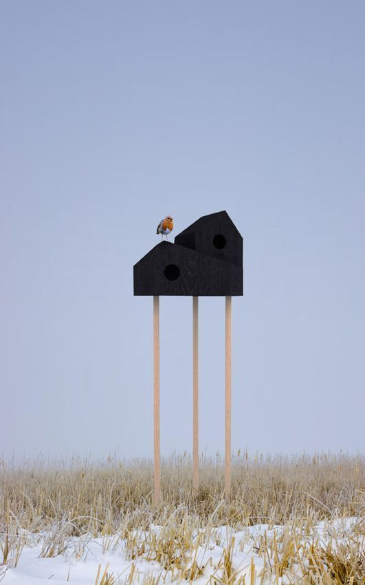 Birds House ••• Shiro Studio