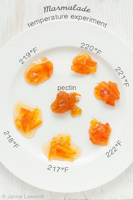 Do you know what temperature you need to cook marmalade to? Take the guessing game out of homemade marmalade | kitchen heals soul.