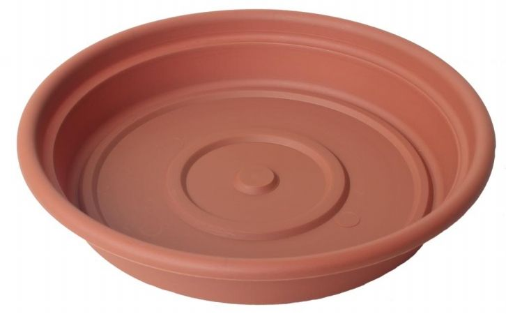 Bloem 20in Dura Cotta Saucer Terra Cotta SDC20-46. (   Welcome to UnbeatableSale.com, where the SALE is truly UNBEATABLE!  )  .  .http://search1.unbeatablesale.com/?No=0&Nty=1&D=dura+cotta+sauser&Ns=p_price_sale&vno=96&Dk=0&N=0&Ntt=dura+cotta+sauser