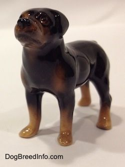 "This the Hagen-Renaker miniature Rottweiler dog by artist Maureen Love. It is item number 3138 and was first issued to the HR line in 1993. It is of a black and tan Rottie in a standing pose. It measures 1-3/4 inches tall from the ground to the top of the head, 2-1/2 inches long from the tip of the nose to the back of the leg and about 1 inch wide across the back legs. Made in the USA | Front-side view | Collectable Vintage Rottweiler Dogs | ""For your enjoyment only... They are not for…"