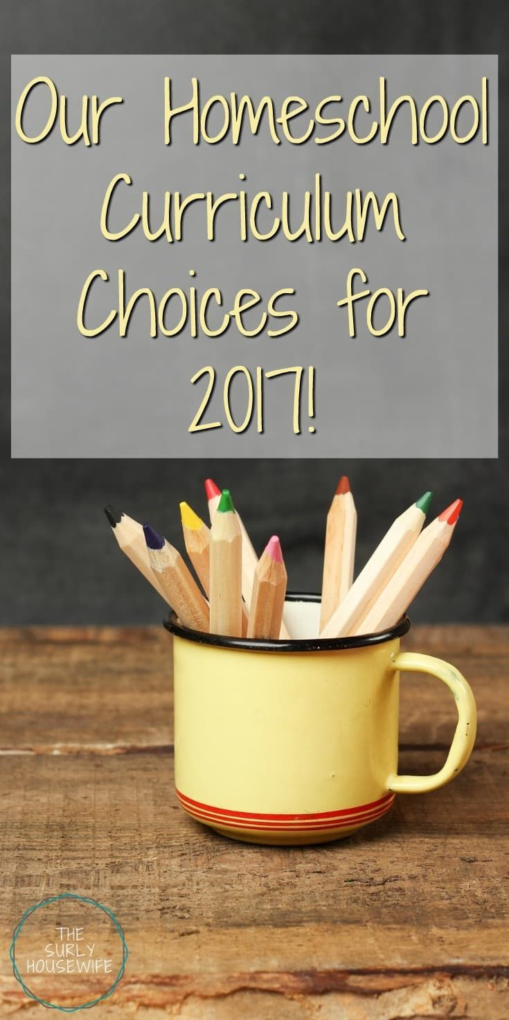 Homeschool curriculum 2017 | Our secular homeschool curriculum choices for 2017! I believe I found the best and more affordable school choices I could for my kids. Click here for more! | Build your library curriculum | secular homeschool options | secular homeschoolers | inexpensive curriculum options |