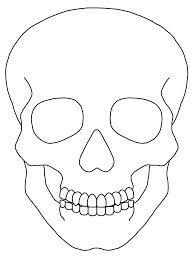 Image result for skull outline