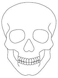 Image result for skull outline