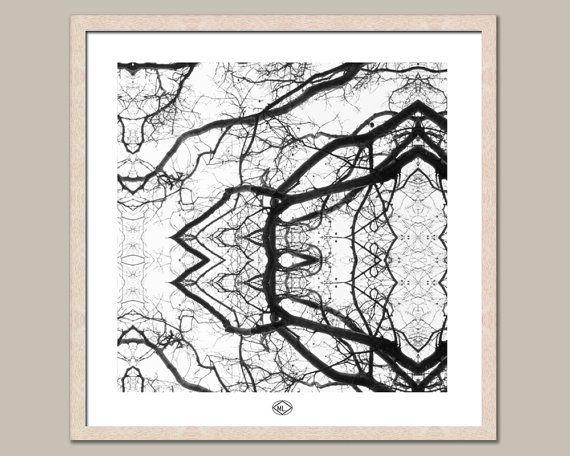 Mirrored Branches 24x24F   24 x 24 framed print Australian made Frame (raw wood light tan colour 2cm width, 4cm height, glass, 3mm self