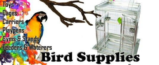 Pet Store Online Supplies – Best Dog, Cat, Bird – Fish Accessories #pet #store #animals http://pet.remmont.com/pet-store-online-supplies-best-dog-cat-bird-fish-accessories-pet-store-animals/  Pet Store for all your pet supplies The Best Online Pet Store Supplies and Accessories Shop for Discount Dog, Cat, Bird and Fish Products Best Pet Store Online offers great pet store supplies and accessories at discount prices. Affordable dog beds, wire dog crates, strollers, bird cages, cat toys and…