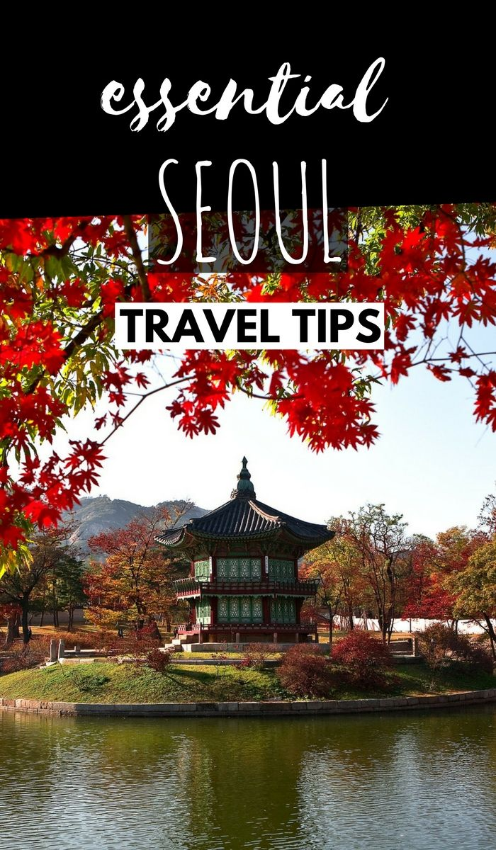 Insider's Guide: Essential Seoul Travel Tips You Need To Know Before Visiting