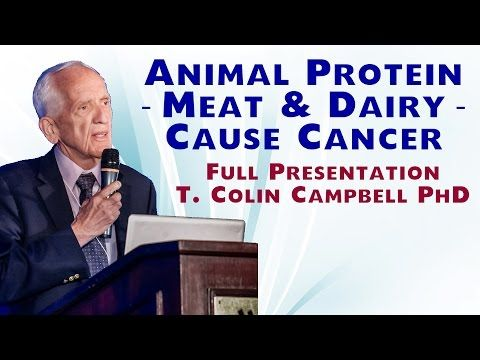 """T. Colin Campbell Interview """"The China Study"""" at Hippocrates Health Institute - YouTube"""
