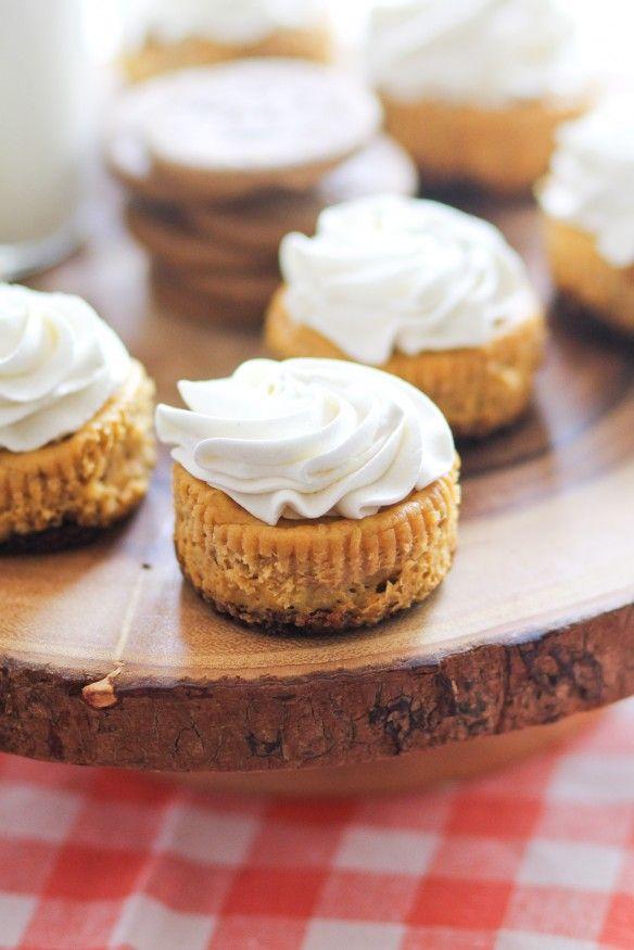 Mini Pumpkin Cheesecakes -- so much easier than a big cheesecake!