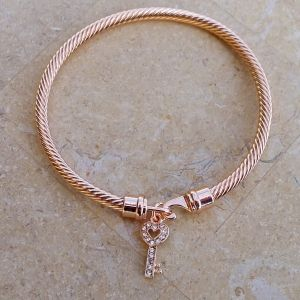Twisted Cable Bangle - Copper with Czech glass rhinestone Key and Hook-and-eye clasp.