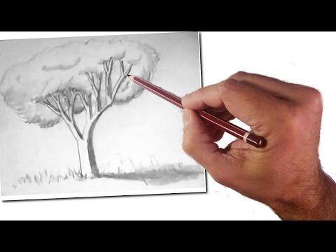Cómo Enseñar a Dibujar a Niños: Un Árbol Realista: Técnicas de Dibujo Fácil - YouTube