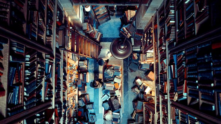 Monsieur Labisse S Bookstore From The Movie Hugo