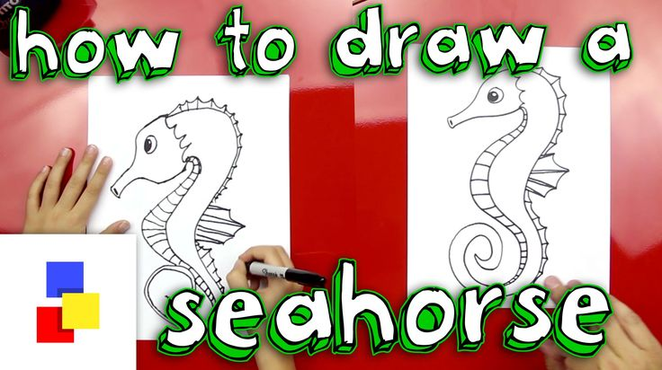 how to draw a cartoon seahorse