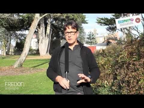 Interview de Stéphanie Cariou paysagiste A3 Paysage à #Brest http://www.a3paysage.com/