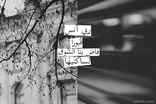 Pin By Arabic Letters On Arabic Quotes Short Quotes Love Love Quotes Wallpaper Arabic Love Quotes