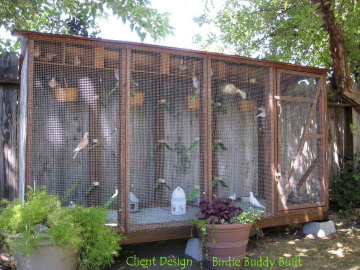 387 Best Aviaries Dovecotes And Bird Cages Images On