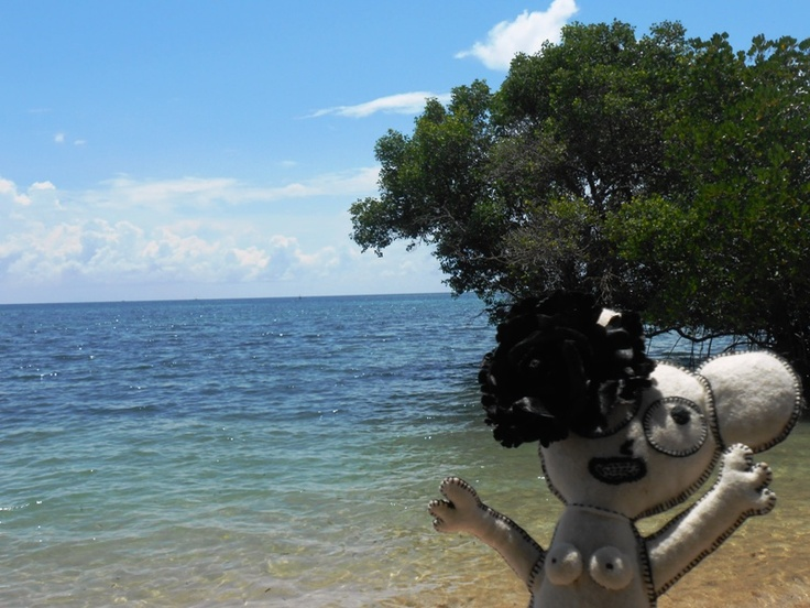 the beach at North Bali - Bali, Indonesia   (i love mangrove)
