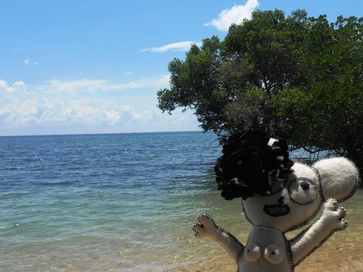 the beach at North Bali - Bali, Indonesia   (i love mangrove)