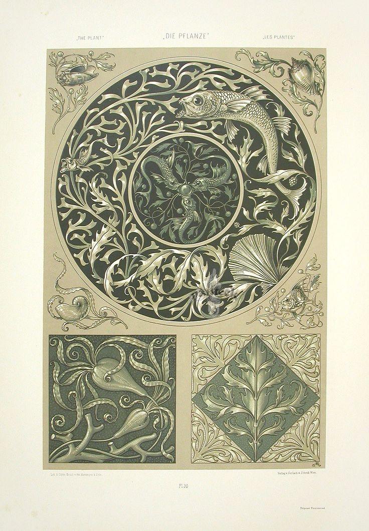 """Nautilus Shell & Carp"" from Anton Seder Die Pflanze Art Nouveau Prints 1890"