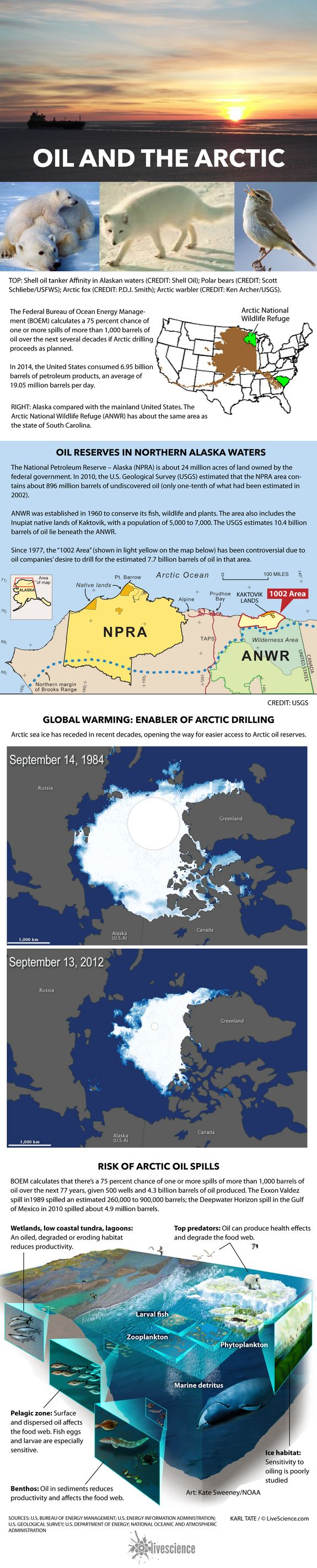 The Alaskan Arctic Oil Drilling Controversy Explained (Infographic)