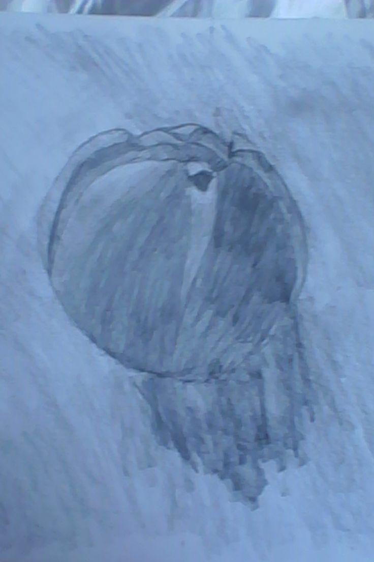 KPH - pomeranč / drawing of right hemisphere - orange