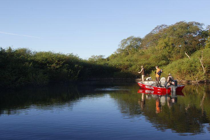¿Aficionado a la pesca deportiva? La presa El Salto es la opción ideal en Elota. Es muy frecuentada ya que en ella abundan especies de Lobina, Tilapia y Bagre.