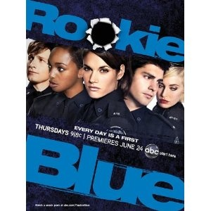 Love thisBig Cities, Rookie Blueanoth, Favorite Tv, Rookie Cops, Smallest Mistakes, Cops Plunge, Cities Police, Big City, High Stakes