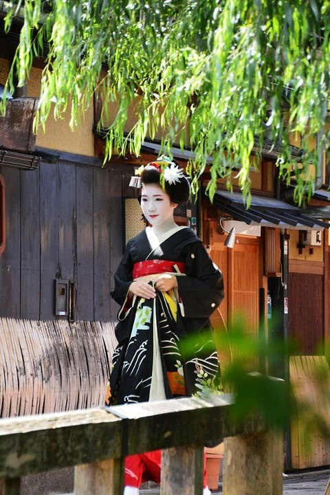 [Hassaku]    Hassaku is that one day in August of the lunar calendar. On this day there is a custom of old in the sense that the gift of gratitude to people who are indebted around. Geiko and Maiko is a dress, go to OCHAYA and teacher.