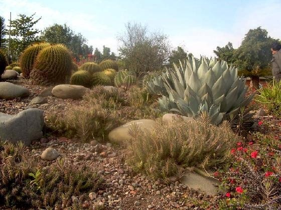 U0027Lakeview Cemetery #2u0027 Cleveland Travelogue By CoAir13. Cacti GardenDesert  ...