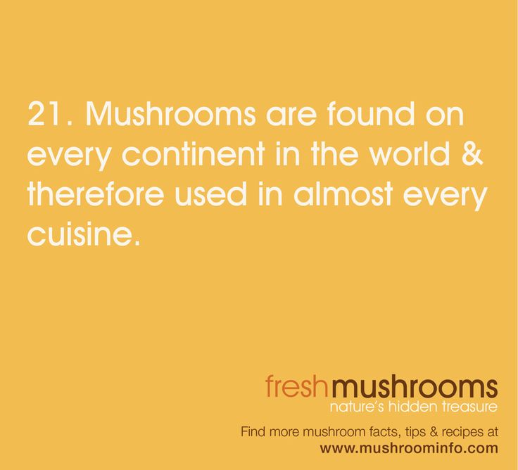 Mushroom business grows from new technology