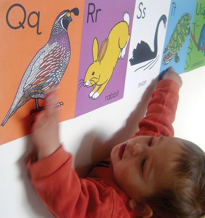 Animal ABC wall frieze - harrietbailey.com
