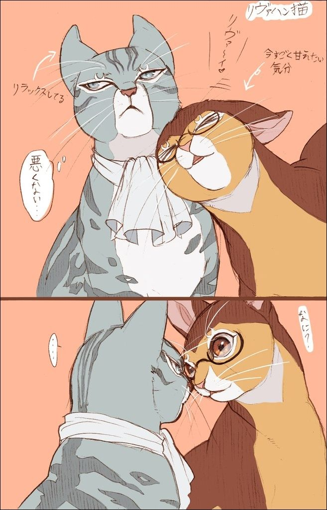 Eren X Levi As Cats And Dogs