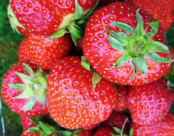 Norske jordbær - det finnes ikke bedre!