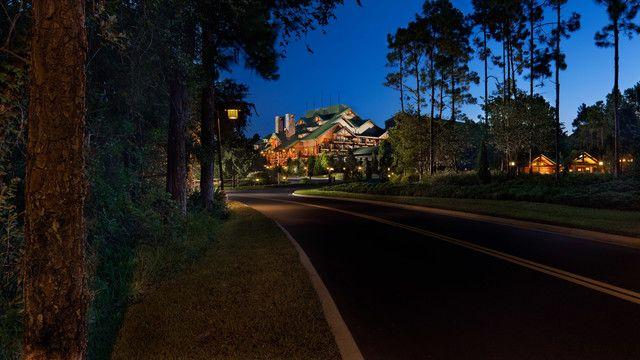 Recorre un camino lleno de pinos hasta Disney's Wilderness Lodge, donde te esperan la naturaleza y el confort.