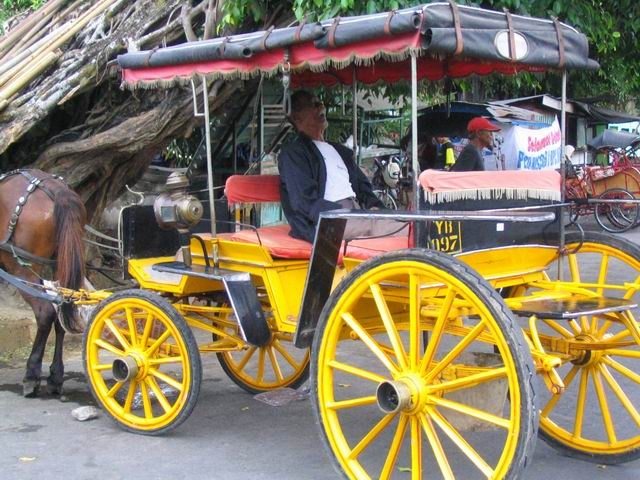 Andong, horse cart for human transportation  exist in several cities in Java Island, Gili Islan Lombok
