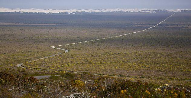 De Hoop Nature Reserve - The Whale Trail