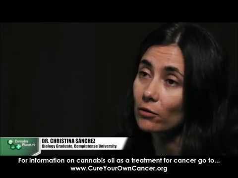 ▶ Dr.Christina Sanchez explains how cannabis kills cancer cells (MORE at cureyourowncancer.org) - YouTube
