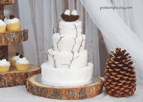 Cute, outdoorsy cake: Rustic Birds, Cakes Ideas, Newborns Photo, Birds Cakes, Cakes Cupcakes, Trees Slices, Rustic Wedding Cakes, Twig Cakes, Cupcakes Stands