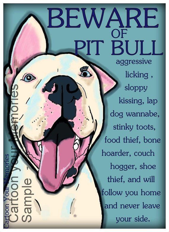 How To Stop Dog Aggression Pitbulls Pitbull Terrier Lap Dogs