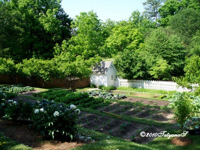 MySecretGarden: Colonial Gardens. Part 3   Williamsburg
