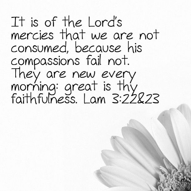 Lamentations 3:22&23 KJV (the verses I remember my dad using most often in prayers at church)
