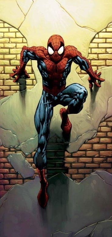 Spiderman ist viel mehr als ein Idol,,,  Es ist ein Stück Kindheit im erwachsen werden und  Ebenso Erwachsen werden in der Kindheit    Siehe Story von ihm  Verantwortung mit Kräften, mit Tante May, Vorallem Darstellung seiner hinter Gedanken