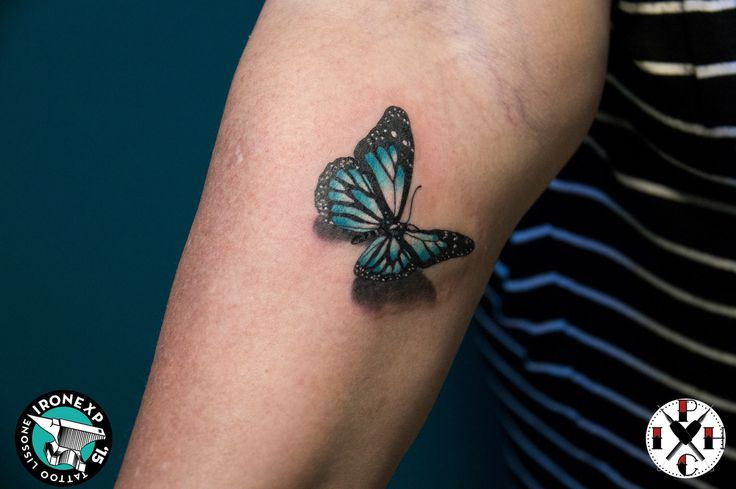 BUTTERFLY REALISTIC