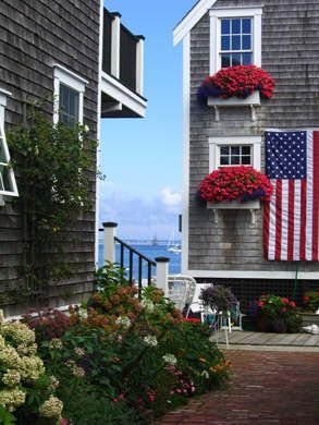 Cape Cod & Islands Photo Gallery - Photo Contest 2008 in