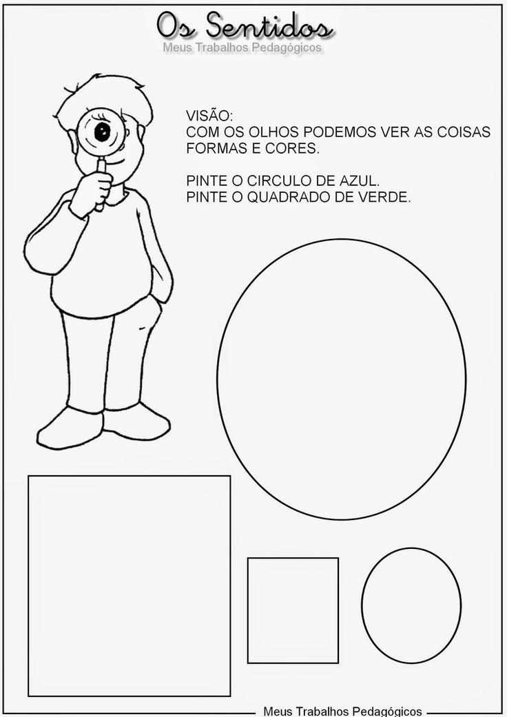 Excepcional 7 best atividades pedagógicas os sentidos educação infantil images  RD78