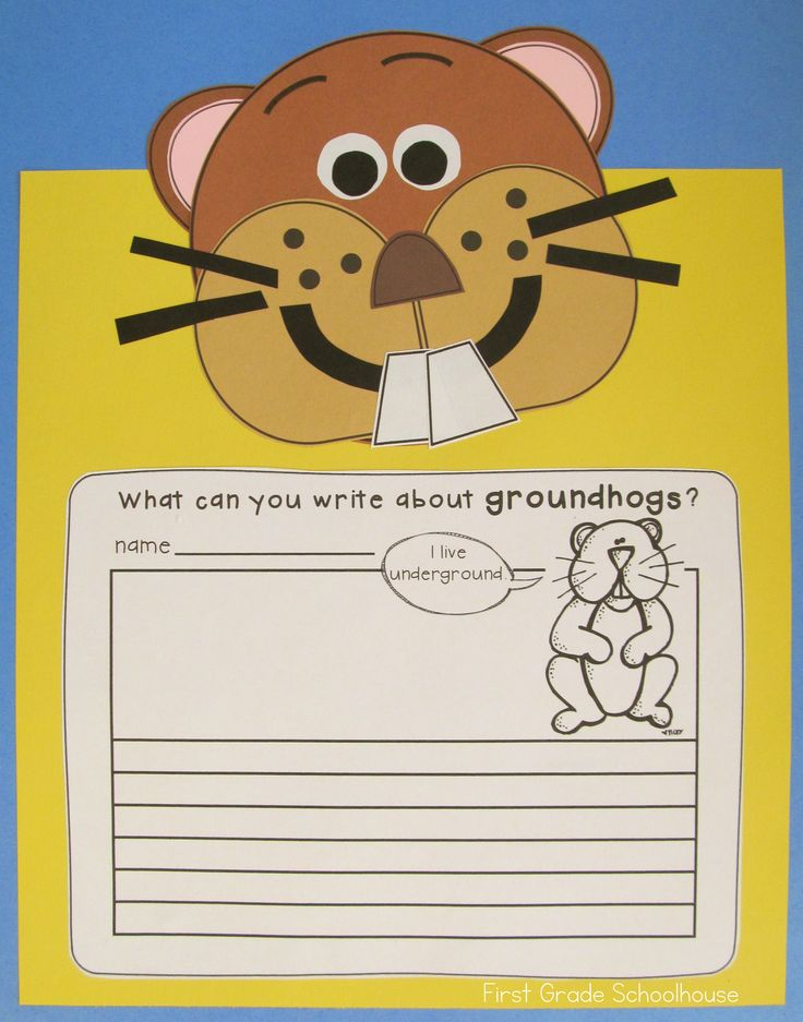 Groundhog Day Activities and Craft includes informational posters, a booklet, printables, and a craft. Students take a Punxsutawney Phil survey to predict if he will see his shadow. They use the poster and booklet to learn about the February 2nd holiday.