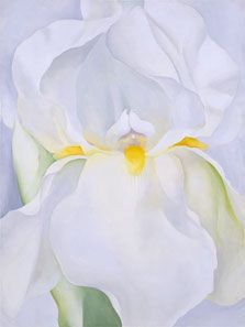 """Georgia O'Keeffe, """"Lirio blanco n.º 7"""", 1957. Museo Thyssen - Bornemisza. Su particular abstracción lírica, que se anticipa a las corrientes no objetivas norteamericanas de los años cincuenta, será descrita como esencialmente femenina.  #ProgramaNosotras"""
