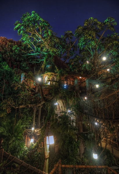 disneyland  Swiss Family Robinson