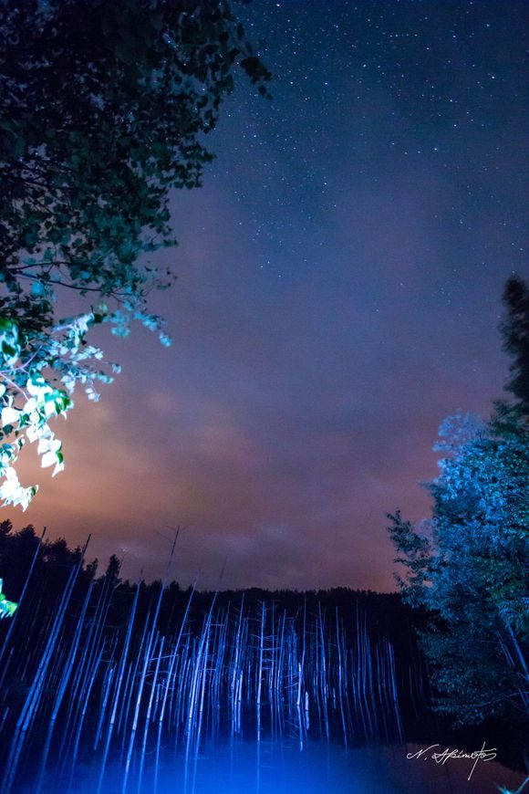 blue pond under a star   星下の、青い池  青い池の夜。 静かな池の上には、沢山の星がみえます。  気に入っていただけたら沢山シェアしてくださいね。(^^)v  ※深夜、早朝の青い池周辺は、熊が出没します。興味本位で訪れないでください。  また、こうした熊の出没の原因は、ゴミの投棄によるものです。  ゴミは、お持ち帰りください。