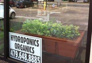 Aquaponics Systems, Supplies and Education www.theaquaponics...